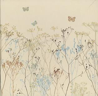 Butterflies, Designer Boxed Notes